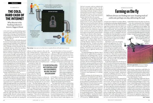 Article Preview: THE COLD, HARD CASH OF THE INTERNET, January 2013 | Maclean's