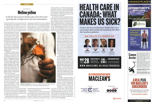 Article Preview: Mellow yellow, March 2013 | Maclean's