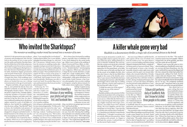 Article Preview: A killer whale gone very bad, July 2013 | Maclean's