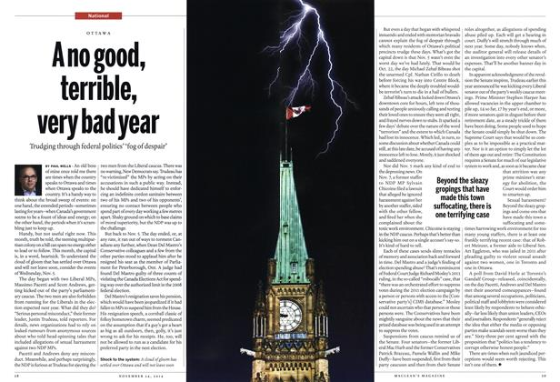 Article Preview: A no good, terrible, very bad year, November 2014 | Maclean's