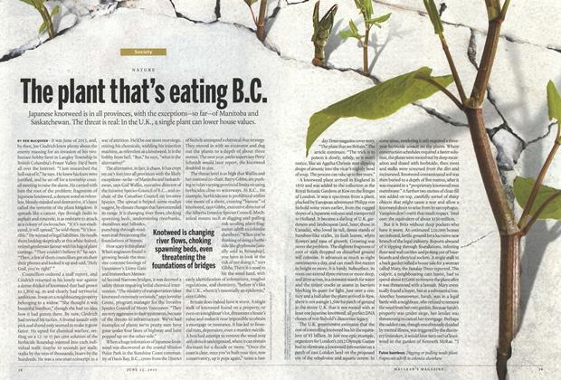 Article Preview: The plant that's eating B.C., June 2015 | Maclean's
