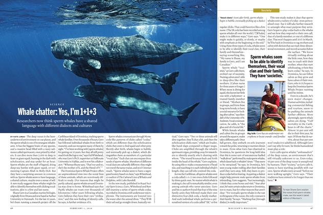 Article Preview: Whale chatter: Yes, I'm 1+1+3, February 1 2016 | Maclean's