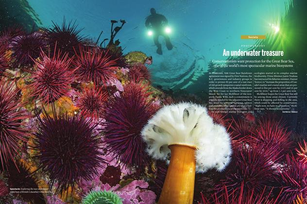 Article Preview: An underwater treasure, April 11 2016 | Maclean's