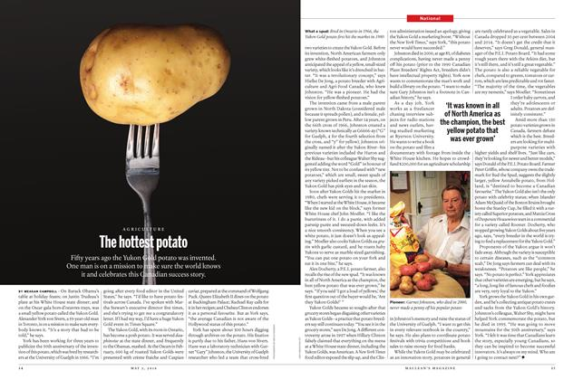 Article Preview: The hottest potato, May 2 2016 | Maclean's