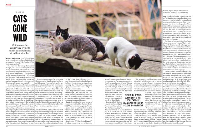 Article Preview: CATS GONE WILD, APRIL 2017 | Maclean's