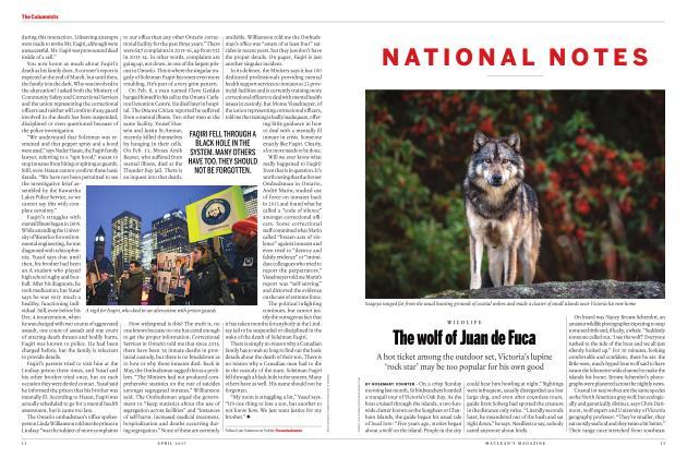 Article Preview: The wolf of Juan de Fuca, APRIL 2017 | Maclean's