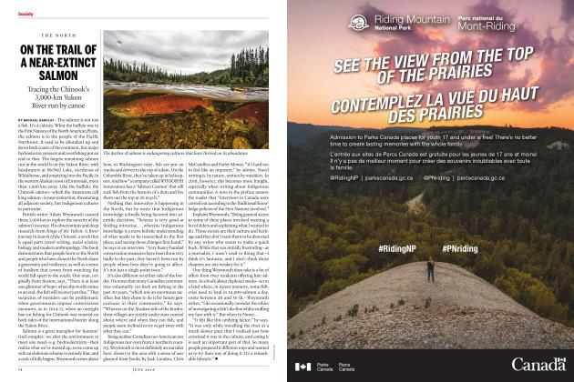 Article Preview: ON THE TRAIL OF A NEAR-EXTINCT SALMON, June 2018   Maclean's