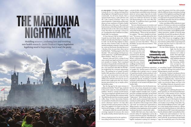 Article Preview: THE MARIJUANA NIGHTMARE, JULY 2018 | Maclean's
