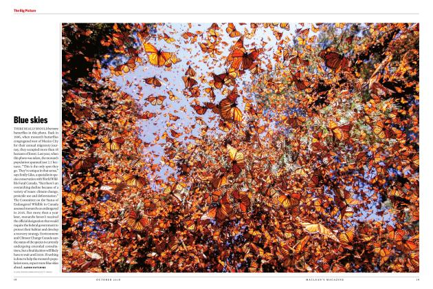 Article Preview: Blue skies, OCTOBER 2018 | Maclean's