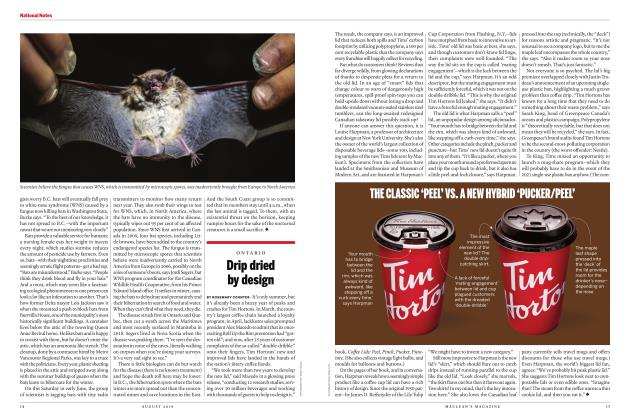 Article Preview: Drip dried by design, AUGUST 2019 | Maclean's