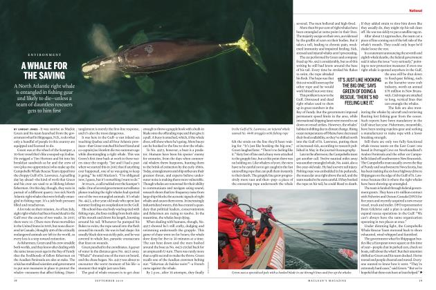 Article Preview: A WHALE FOR THE SAVING, SEPTEMBER 2019 | Maclean's