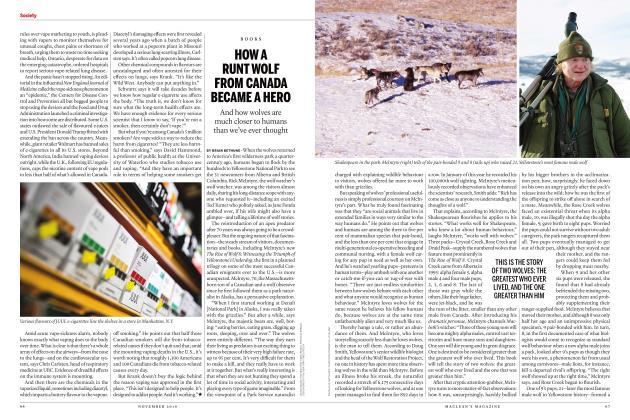 Article Preview: HOW A RUNT WOLF FROM CANADA BECAME A HERO, NOVEMBER 2019 | Maclean's