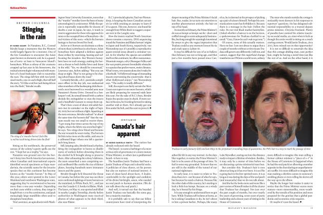 Article Preview: Stinging in the rain, JULY 2020 | Maclean's