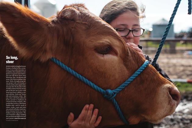 Article Preview: So long, steer, AUGUST 2020 | Maclean's