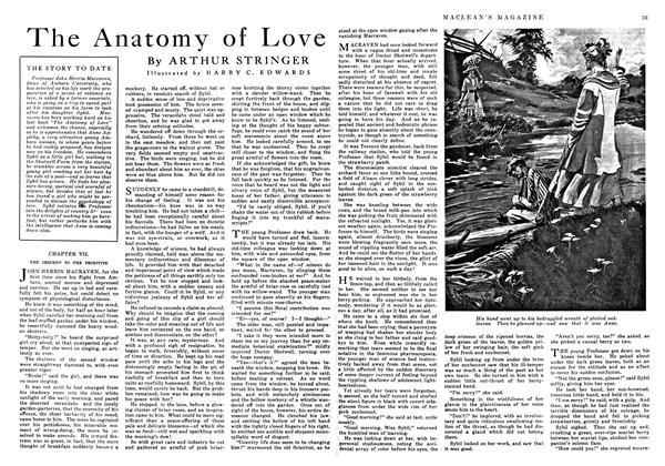 The Anatomy of Love