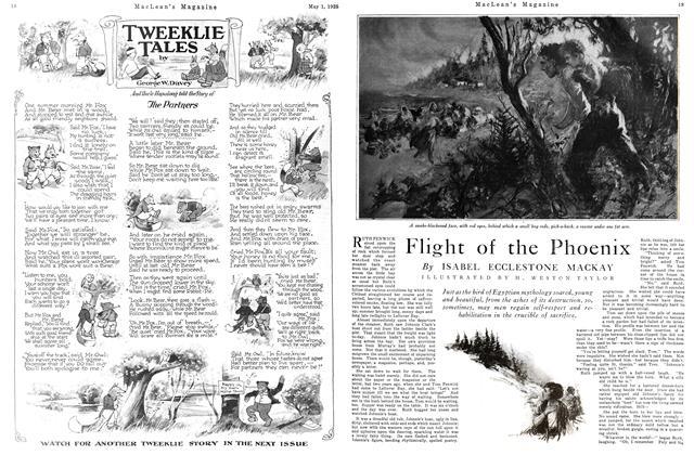 Flight of the Phoenix