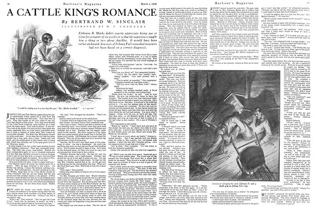 A CATTLE KING'S ROMANCE