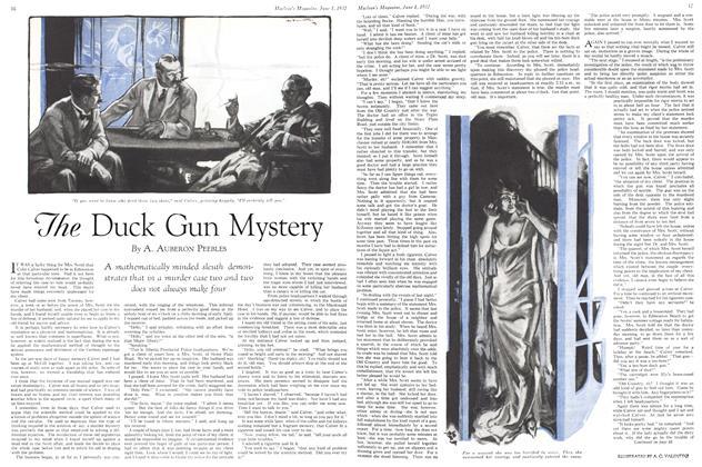 The Duck Gun Mystery