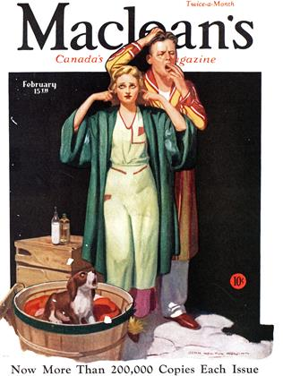 Cover for the February 15 1933 issue