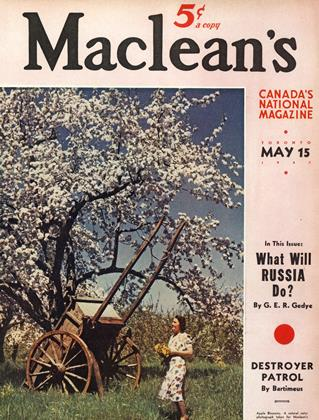 Cover for the May 15 1941 issue