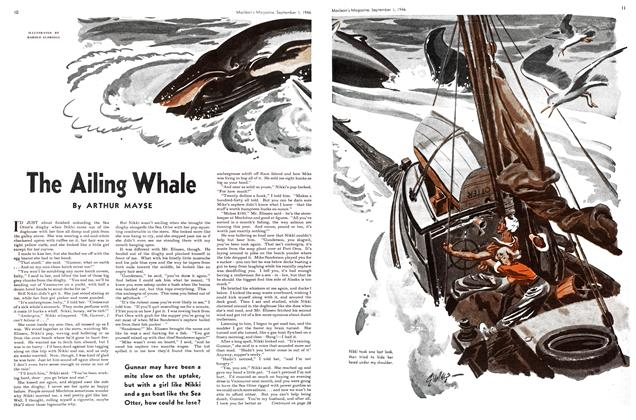 The Ailing Whale