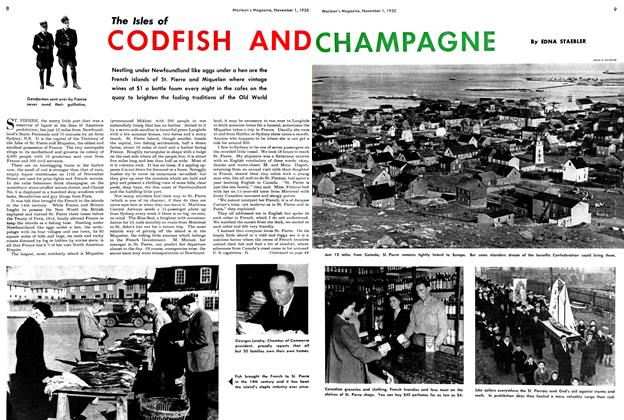 The Isles of CODFISH AND CHAMPAGNE