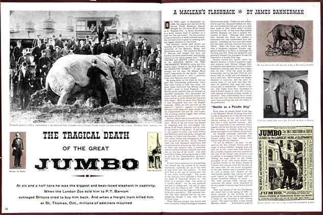 THE TRAGICAL DEATH OF THE GREAT JUMBO A MACLEAN'S FLASHBACK