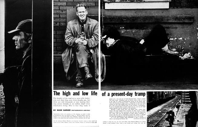 The high and low life of a present-day tramp