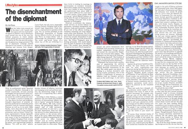 The disenchantment of the diplomat