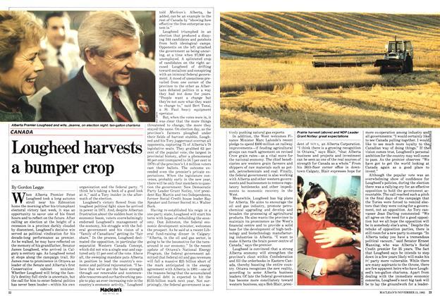Lougheed harvests a bumper crop