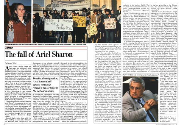 The fall of Ariel Sharon