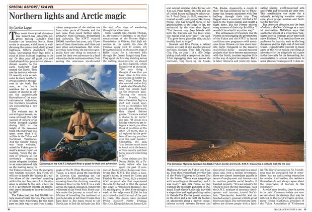 Northern lights and Arctic magic