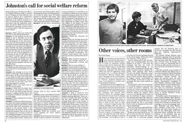 Johnston's call for social welfare reform