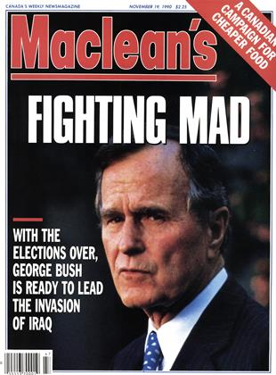 Cover for the November 19 1990 issue