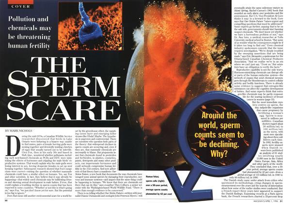 THE SPERM SCARE