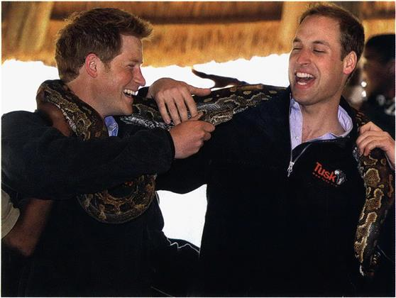 Prince William and Prince Harry, brothers in arms - Macleans ca