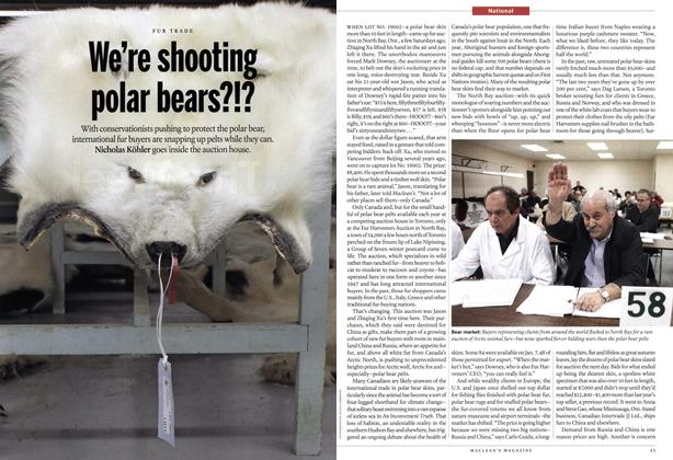 We're shooting polar bears!?